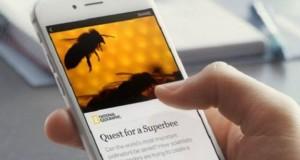 فيسبوك أطلق في بداية هذا العام مشروعا مشابها يطلق عليه Instant Articles